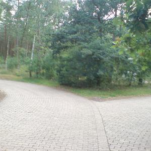 Parkplatz mit zwei Pkw Spuren