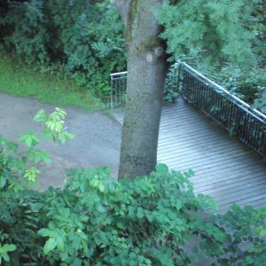 Leine Rad- und Fußweg, Franz-Mock-Weg