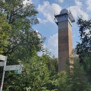 An der B486 am Turm